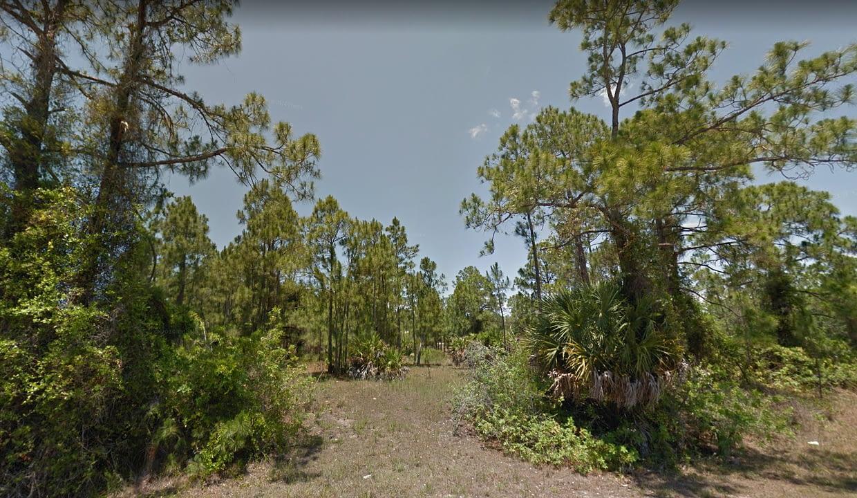 Florida4
