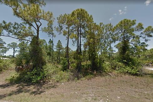 Florida7