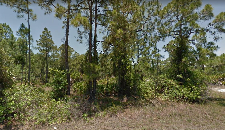 Florida6